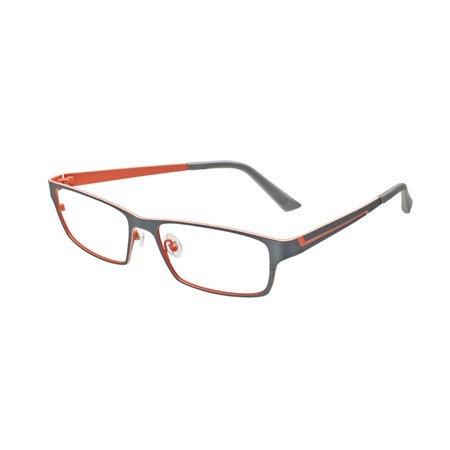 Okulary ProDesign 1384 6521